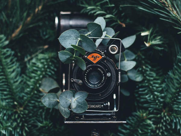 Where to recycle an old or antique camera