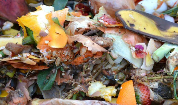 You can compost all food waste using a Bokashi Bin Composting System